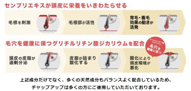 チャップアップの育毛剤の効果は、どんなものがあるのか?